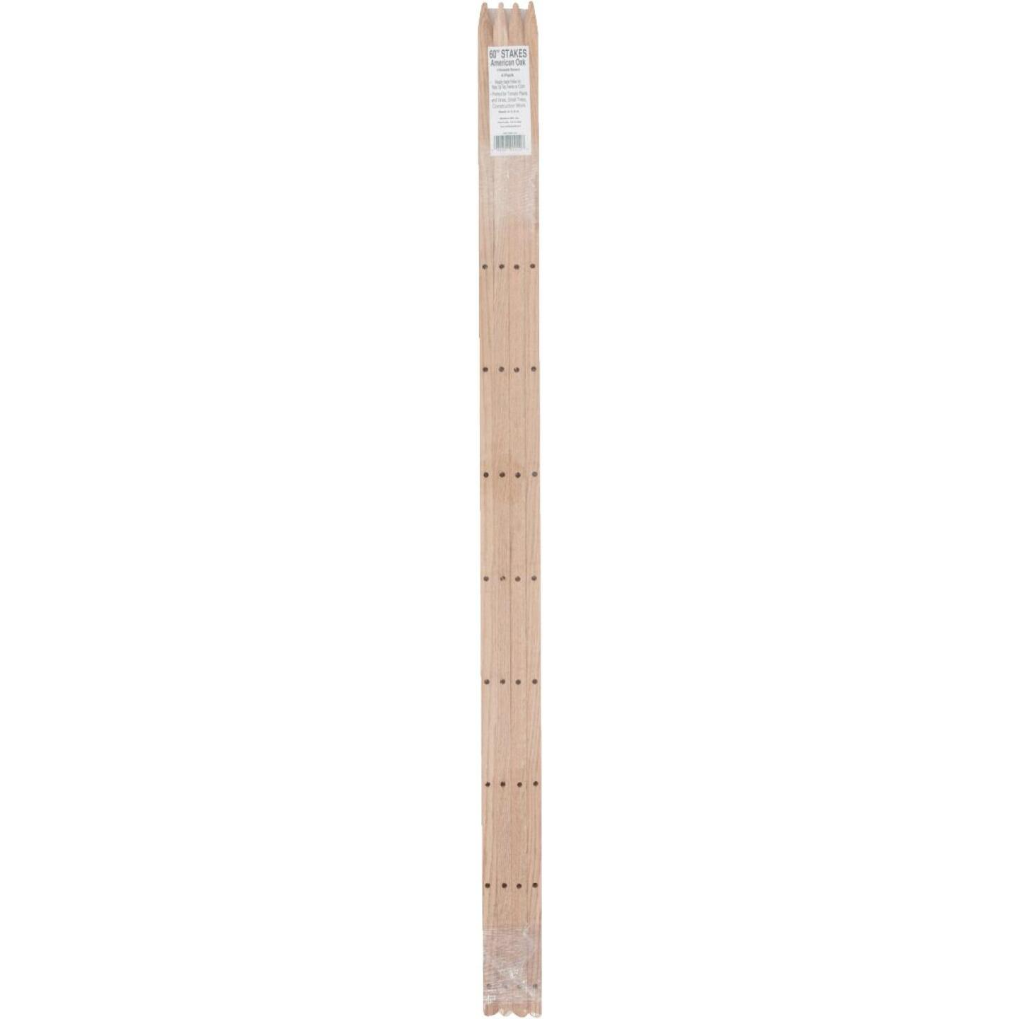 Madison Mill 60 In. Oak Wood Plant Stake (4-Pack) Image 2