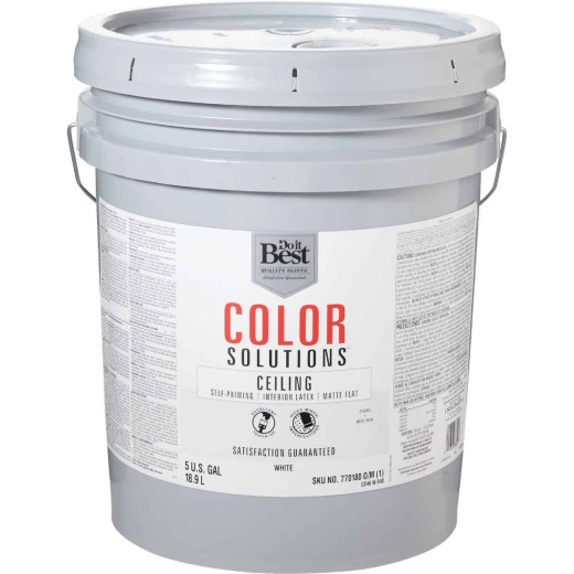Do it Best Color Solutions Latex Self-Priming Flat Ceiling Paint, White, 5 Gal.